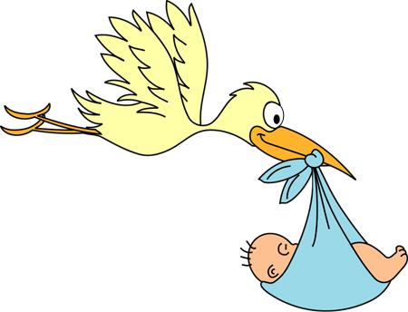 stork-flyingkopie